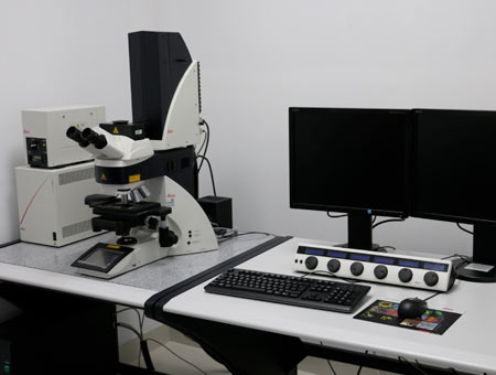 Microscopio confocal No.10159